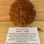 Alder Birthday Tree Small 18th March-14th April | Homeware Gifts | Handmade Gifts