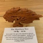 Hawthorn Birthday Tree Small 13th May - 9th June | Homeware Gifts | Handmade Gifts