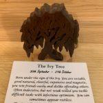 Ivy Birthday Tree 30th September - 27th October