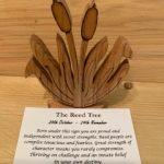 Reed Birthday Tree 28th October - 24th November