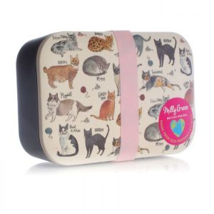 Eco cats lunch box